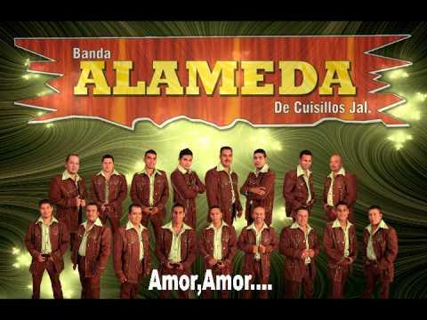 BANDA ALAMEDA EL TORO PALOMO.wmv