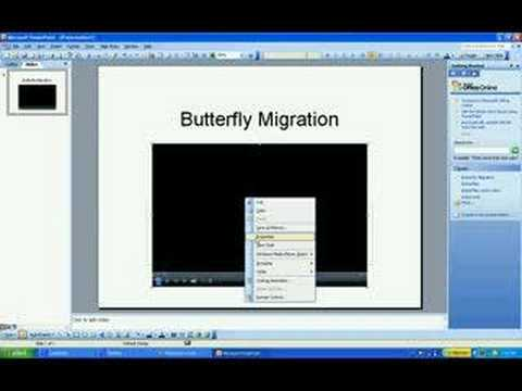 How to embed Windows Media Player in Powerpoint