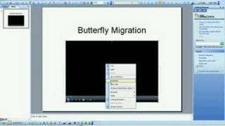How to embed Windows Media Player in Powerpoint(This video shows how to embed Windows Media Player in a Powerpoint presentation so that you can pause a video during a slideshow., 2007-07-03T02:25:19.000Z)