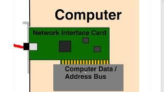 8 The Ethernet Frame