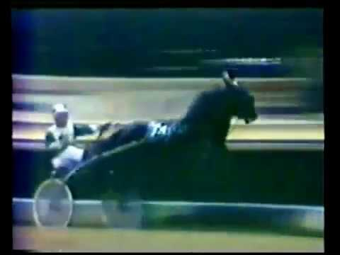 1977 Roosevelt Raceway GREEN SPEED Open Trot Bill Haughton