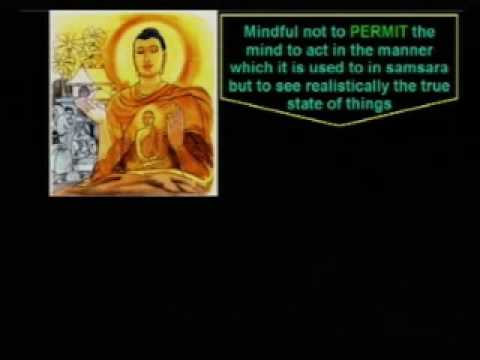 02 Feeling -Discourse by Ven. Amathagavesi Thero