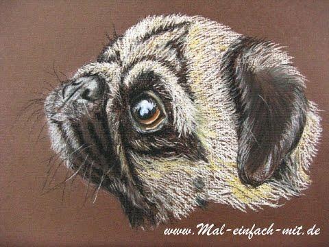 Mops zeichnen mit Pastellstiften / Zeichnen lernen Hund
