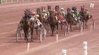 Vidéo de la course PMU PRIX DE GRIGNY
