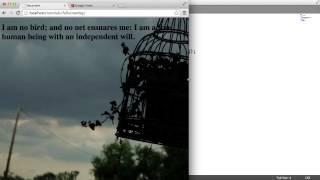 CSS ملء الشاشة صورة الخلفية - إضافة نص: (2/2)