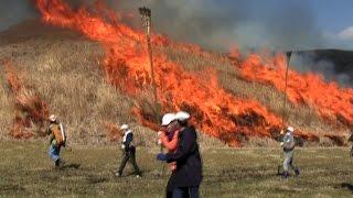 「阿蘇市フラッシュニュース」 阿蘇市立阿蘇小学校の5年生40人が野焼き...