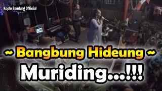MURIDING, Bangbung Hideung Terompet Sunda Kendang Mantul