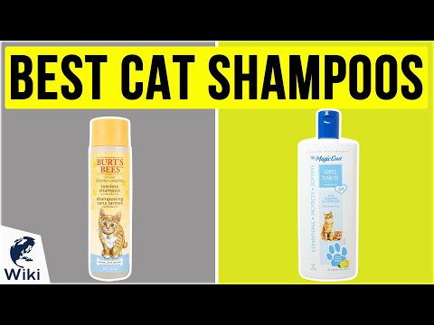 10 Best Cat Shampoos 2020