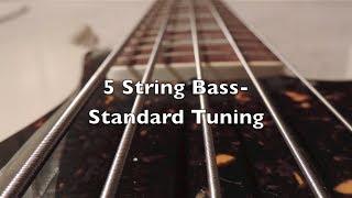 5 string bass standard tuning hd