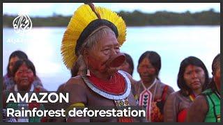 Deforestation in Brazil Amazon rainforest soars 67 percent