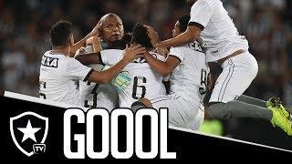 Gols | Botafogo 2 x 1 Paraná | Brasileirão
