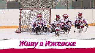 Следж - хоккей