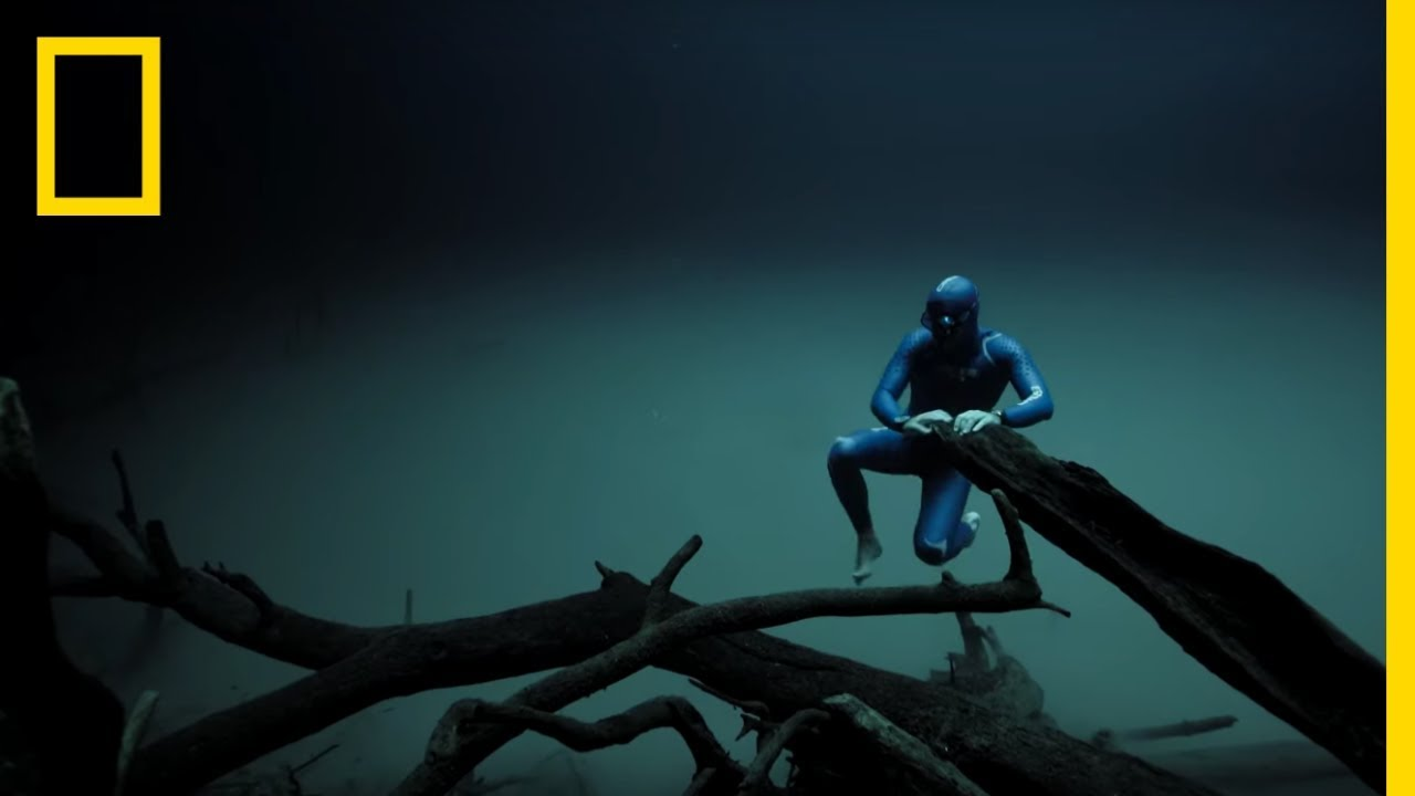 Download Experience the Underwater World Through the Eyes of a Free Diver | Short Film Showcase