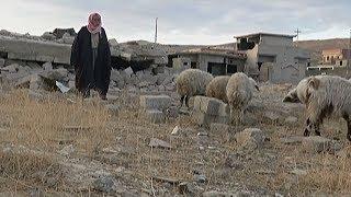 Езиды стали заложниками политического футбола Багдада с курдами (новости)