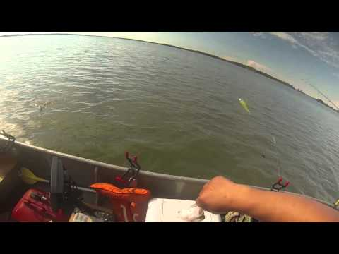 Cheney white perch fishing youtube for Cheney lake fishing report