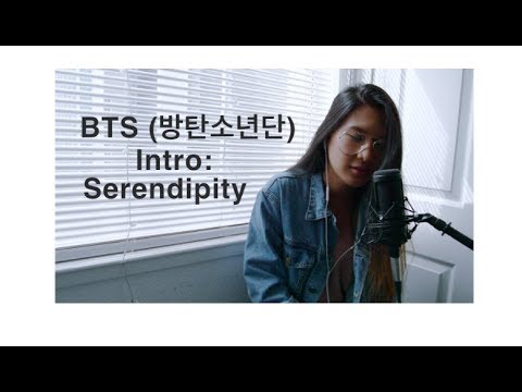 BTS (방탄소년단) – Serendipity (English Cover)