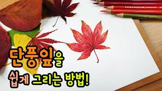 [가볼쌤] 단풍잎 쉽게 그리는 방법!(색연필로 단풍잎 …