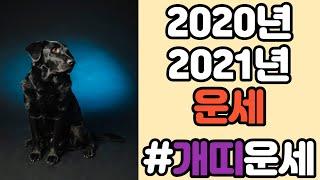 개띠2020년2021년 대박!!신년운세