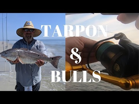 Surf Fishing Florida! HOW TO CATCH REDFISH & TARPON! How To Surf Fish. Fishing Jacksonville Florida