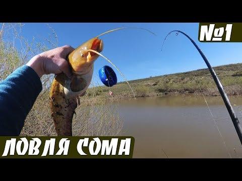 Неожиданный улов на ПРОБКУ. Рыбалка на донку весной.