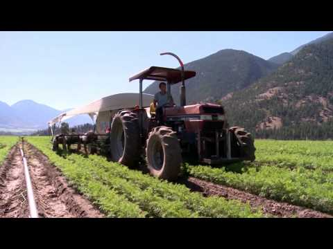 Why Farming? | Fountainview Academy