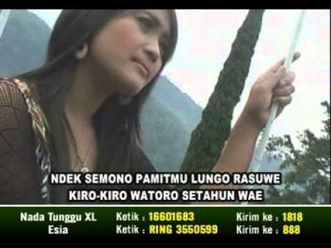 CAMPUR SARI KOPLO ~ (NEW) TAMAN JURUG WANCI SORE (BAMBANG WARWER)