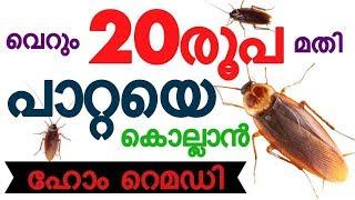 പാറ്റയെ തുരത്താം എളുപ്പത്തിൽ /How to get rid of cockroaches malayalam / how to kill cockroach