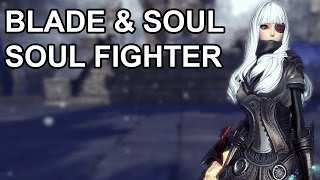Blade & Soul Online Soul Fighter Gameplay and Ice Skills Testing