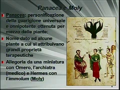 Le piante medicinali nel Medioevo