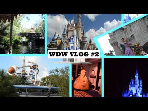 WDW Vacation Vlog #2 (Day 3) | Magic Kingdom! FINAL Electrical Parade EVER