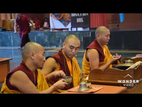 Summer Retreat At Kagyu College On 2019