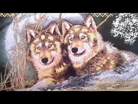 Картинки и рисунки волков, фотографии с волками в стаях и