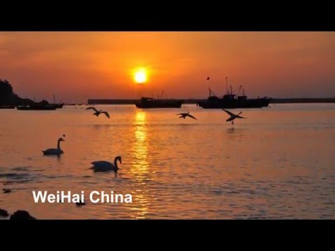Shandong Weihai - Travel China