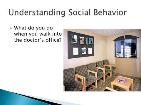 Class 2 Patterns of Behavior and Social Norms