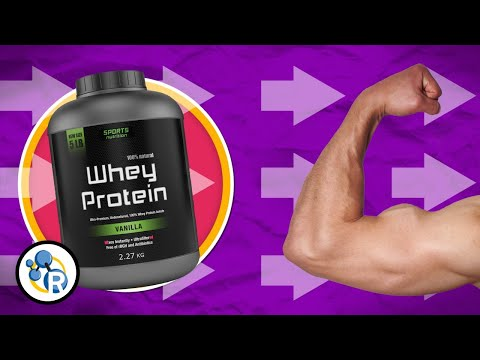 How Does Protein Build Muscle?