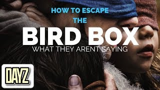 BIRD BOX: The Breakdown (What They aren't Saying) 2018