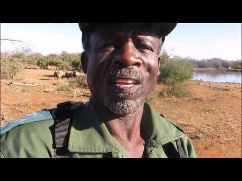 RhinoAlive goes to Swaziland ld