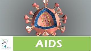 Video AIDS download MP3, 3GP, MP4, WEBM, AVI, FLV April 2018