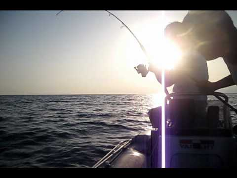 Albacora 11 Kilos  jigging Travel Video