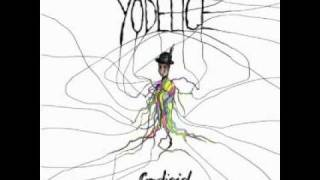 Watch Yodelice Five Thousand Nights video