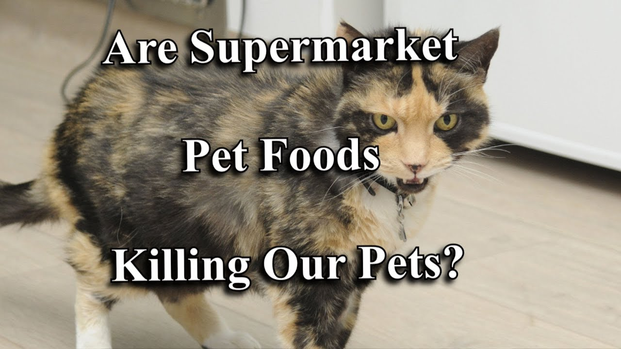 Are Supermarket Pet Foods Poisoning Our Pets?