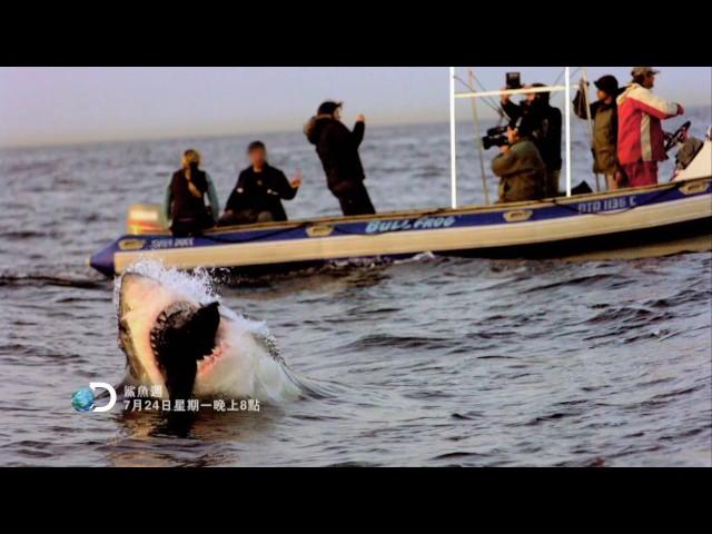 Discovery菲爾普斯VS大白鯊--《鯊魚週》7月24日 ~ 7月30日,晚間8點首播。
