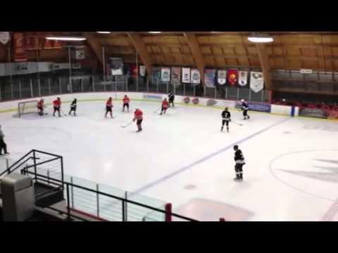Anaheim ice hockey league