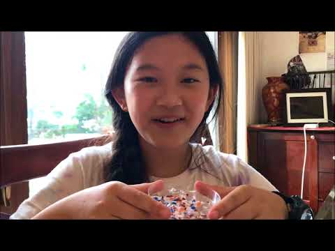 Anna Du - Discovery Education-3M Young Science Challenge - Vlog 1 - Microplastics Experiments