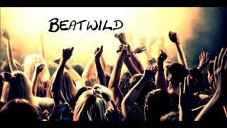 John Newman - Love Me Again ft Avicii & Taio Cruz remix (Beatwild)