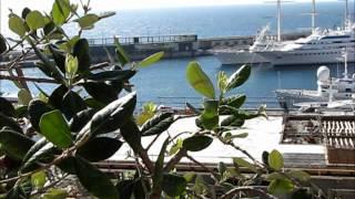 Monte Carlo jour et nuit.wmv