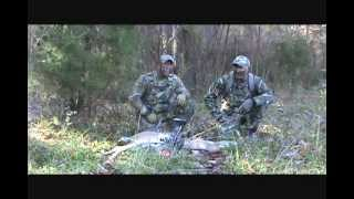 Fawn in Distress Calls: for Deer Hunting