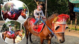 naik kuda ditaman superhero Bandung | lagu anak populer naik Delman istimewa