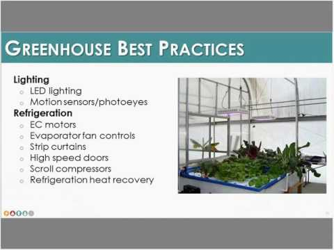 Energy Efficiency and Renewable Energy in Greenhouses: What Makes Sense - GDS Associates