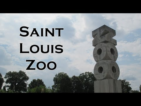 Saint Louis Zoo (8/10/17)